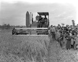 CNRRA / 761 Chinese farmers and their families watching a 12-foot self-propelling Massey-Harris f...