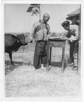 The worker at the right, who is a member of the UNRRA-CNRRA-MOAF veterinary teams in China, regis...