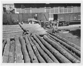 [Middle East] 330 tons of telegraph poles were brought to Alexandria dockside by Egyptian State R...