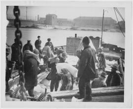 Lifting the flour onto the shoulders of the stevedores