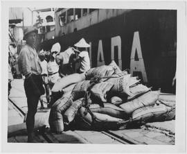 Ammonium sulphate from Vancouver, BC is seen being unloaded onto wharf from UNRRA chartered vesse...