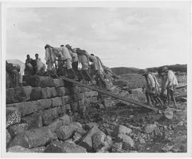 Coolie labour is used to place large stones in place along the Chin Tong Dyke
