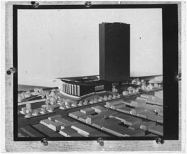 Glass negative